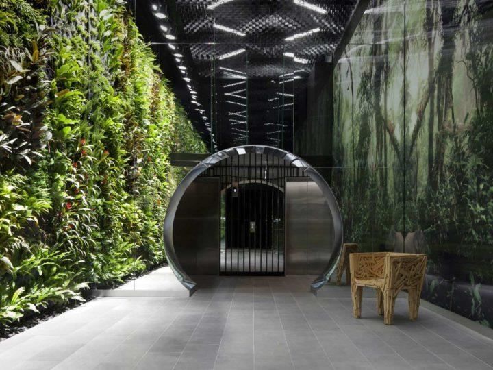 Vol. 1 Biophilic design- czyli trudna miłość do natury w betonowym mieście